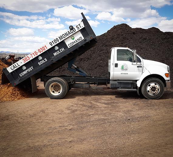 Truck_570x519